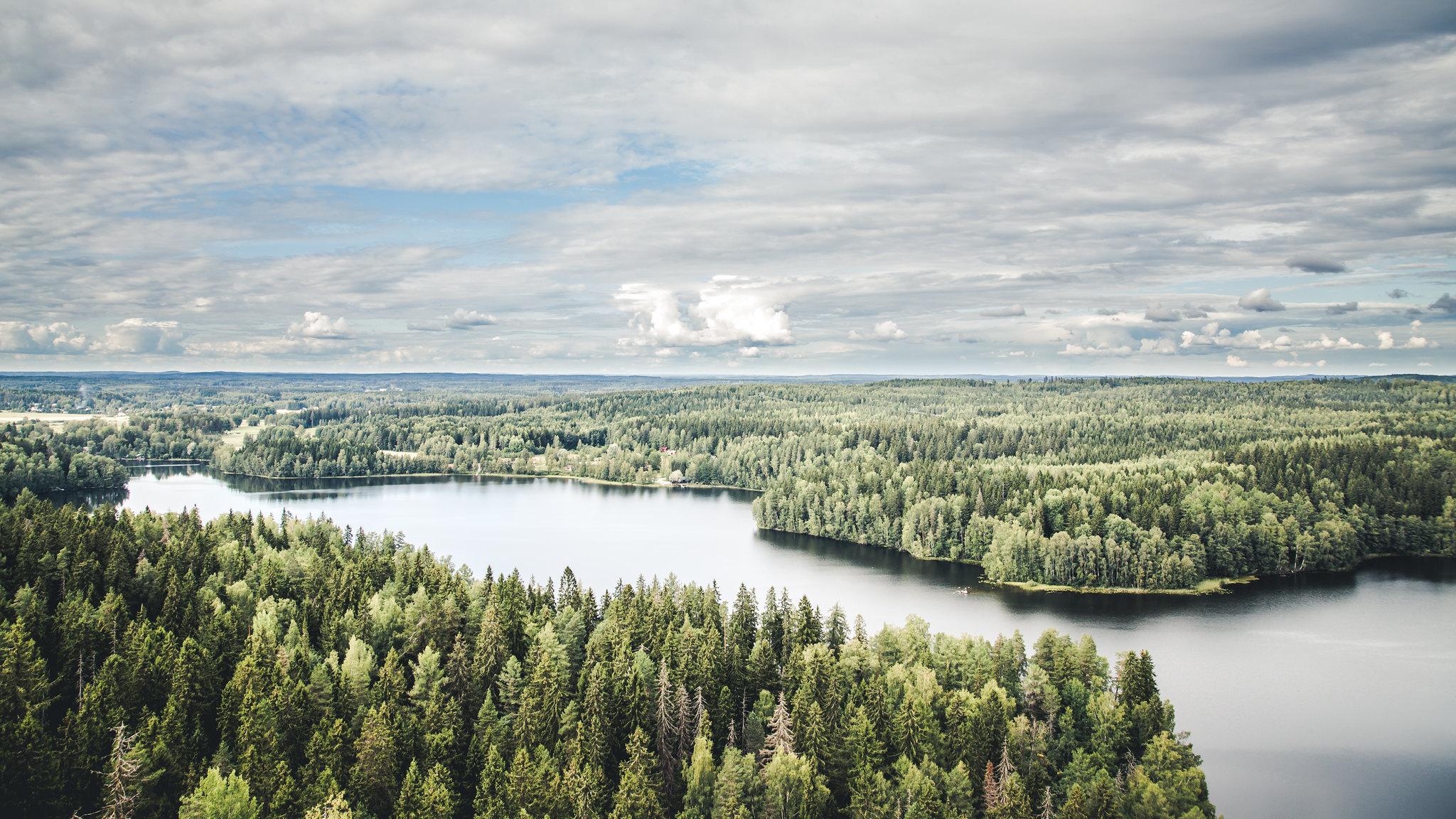 Sibeliuksen Metsä avautuu upeasti Aulangon näköalatornista.